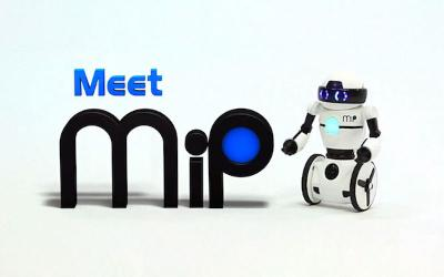 MiP.jpg