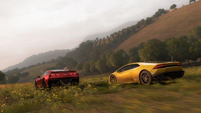 Forza22.jpg