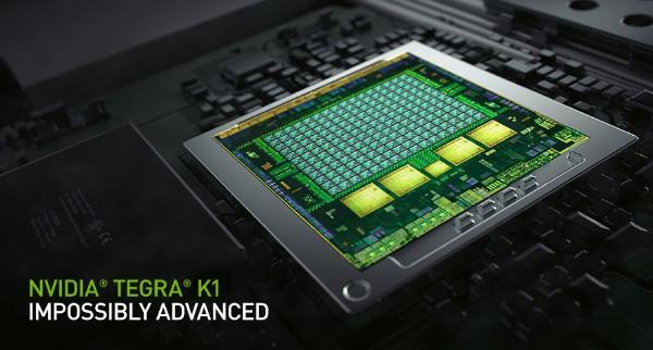 nexus chip.jpg
