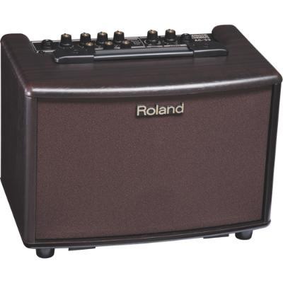 Roland .jpg