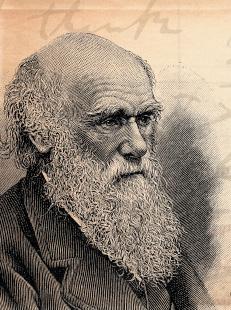 fevrier darwin.jpg
