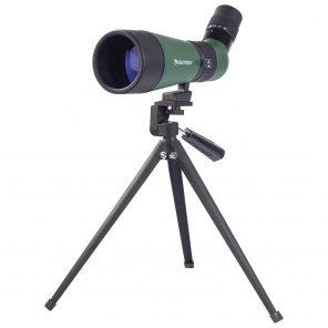 Télescope d'observation de 60 mm 12x à 36x Landscout de Celestron