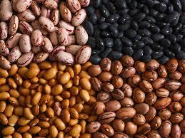sources-de-proteines-legumes