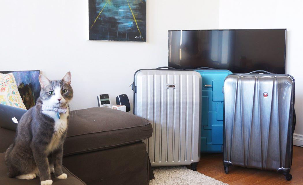 protege valise samsonite