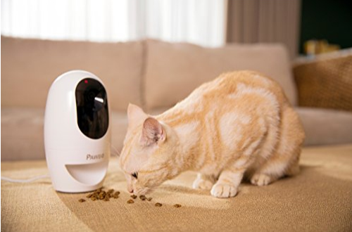 caméra interactive sans fil Pawbo+
