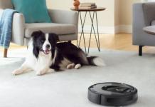 Chien et aspirateur robot sur un tapis