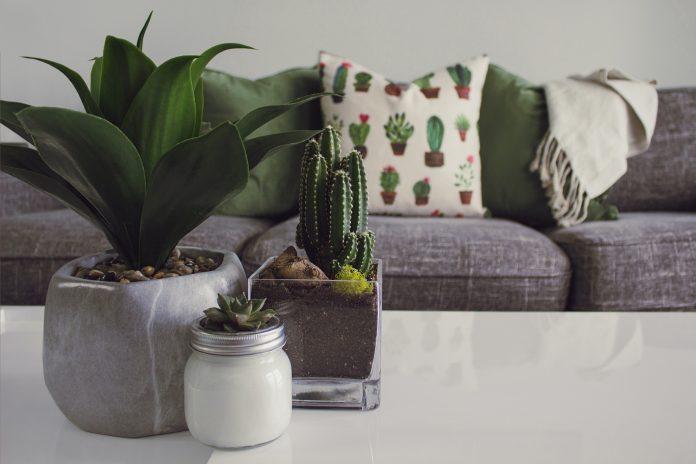 mobilier décor